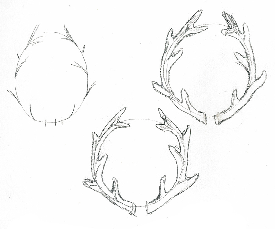 deer antlers drawing easy - photo #1
