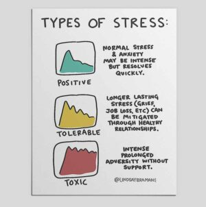 Types of Stress: A Psychoeducational Doodle