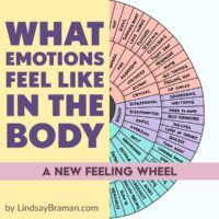 Emotion-Sensation Feeling Wheel; an image showing three inset circles. The inner wheel is basic emotions- happy, sad, disgust, etc- the middle circle contains feeling words- despair, disappointment, awe, etc. The outer circle contains words that describe a sensation that someone might feel in their body if they were feeling the corresponding emotion.