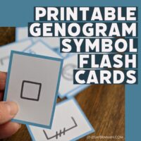Genograms are like family trees, but have their own visual language so the complexity of relationships and intergenerationally transmitted issues is can be concisely represented.