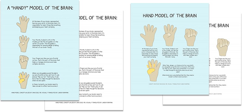 Hand Model Of The Brain A Doodle Illustrated Learning Resource Lindsaybraman Com