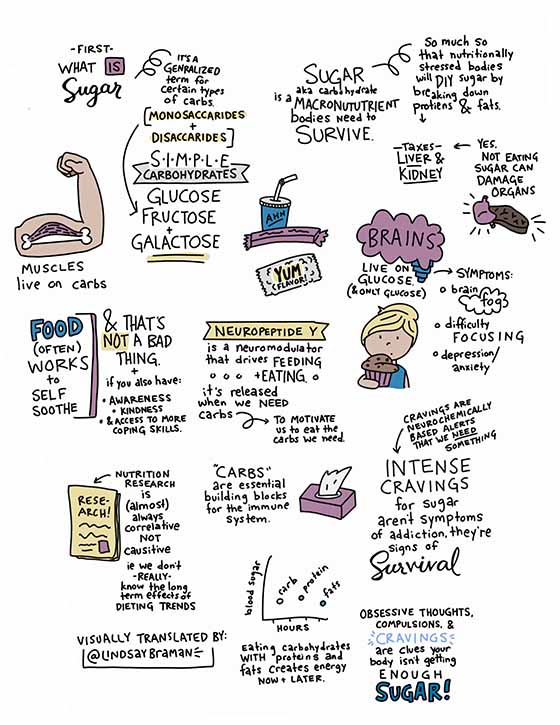 myths about sugar addiction sketchnote