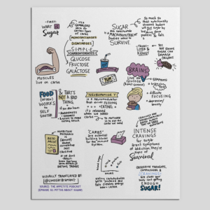Myths About Sugar Sketchnote